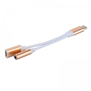 Ddual USB Type-C to 3.5 mm Jack Gold